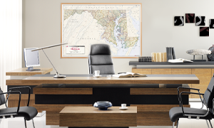 Shop for interior decor wall maps for executive offices.